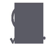 Visiber Logo